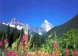Mountains Revelstoke